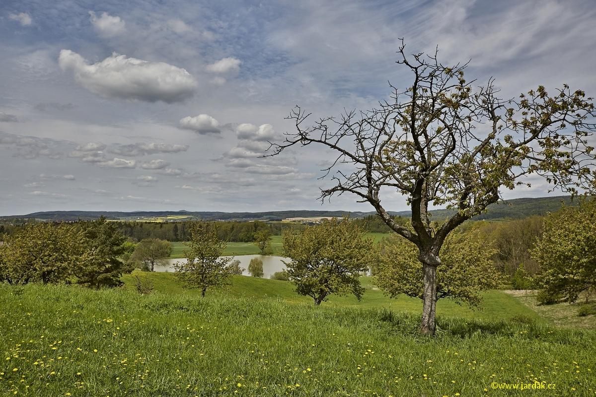 Lázně Bělohrad a okolí