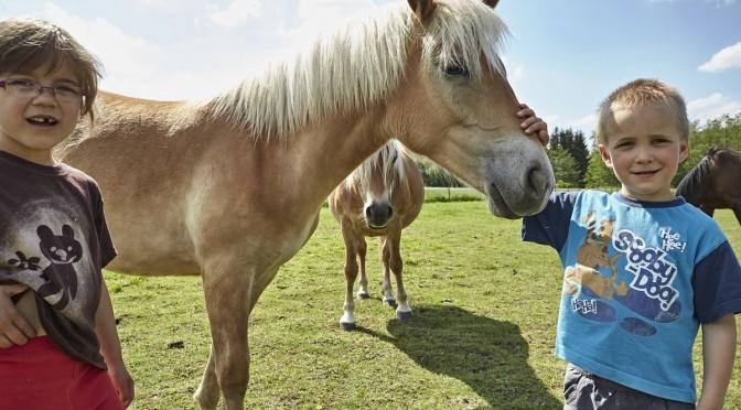 Děti u koní